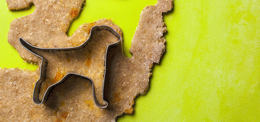 Hundeleckerlies selber machen Hundezahnpflege