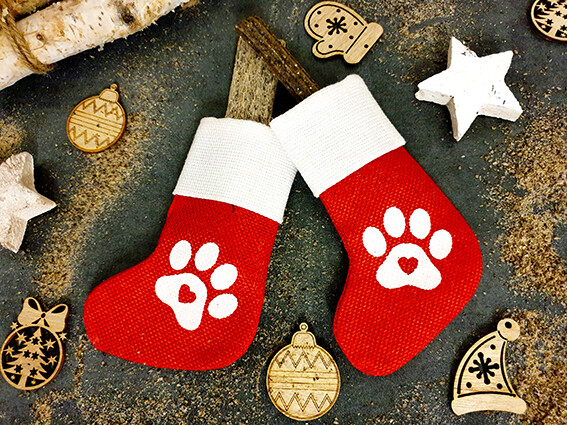 Red Socks for dogs